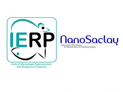 IERP NanoSaclay